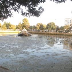 شهر سمنان و فرهنگی منتج از نهرهای روان